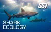 Shark Ecology - Brevet