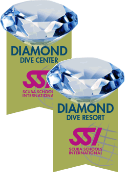 diveSSI Image: SSI-Diamond-Decal