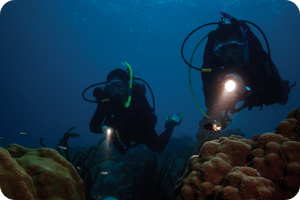 Learn night Diving with Adventure Sports Ski and Scuba