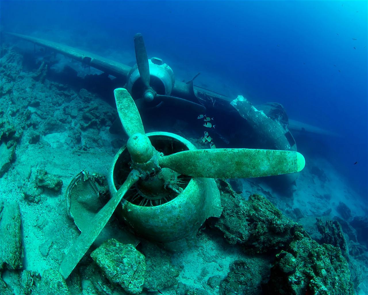 C47 Dakota (Wreck)