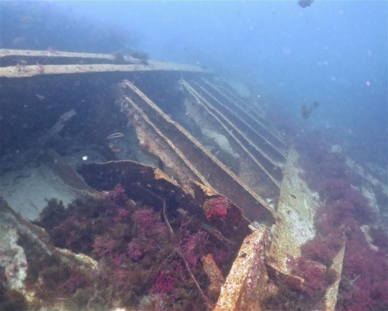 Las Calderas (Wreck)