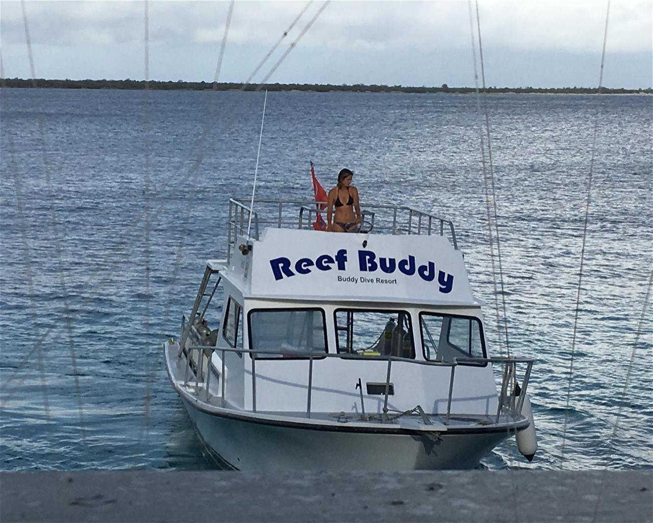 Buddys Reef