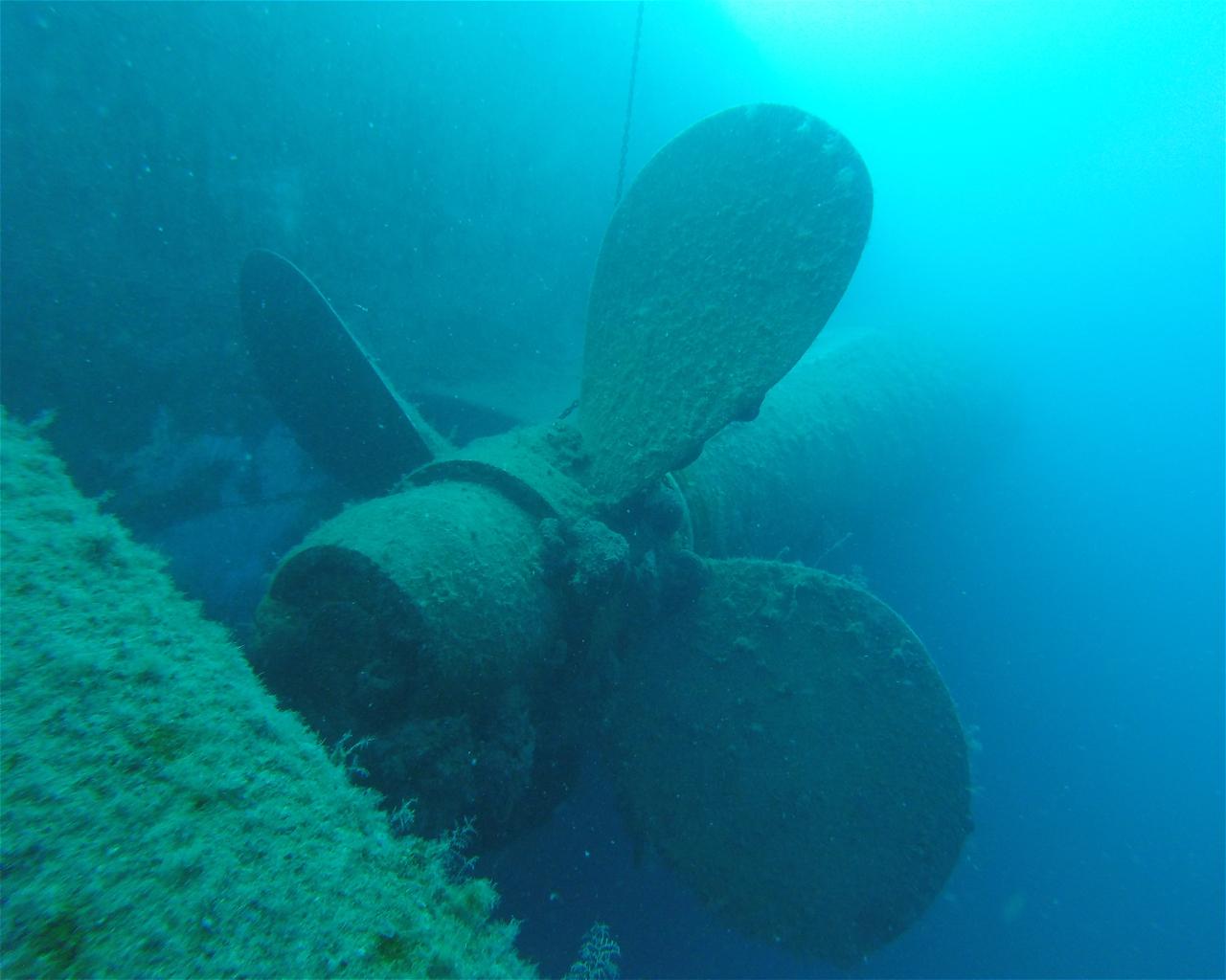 Zenobia Wreck, Cyprus