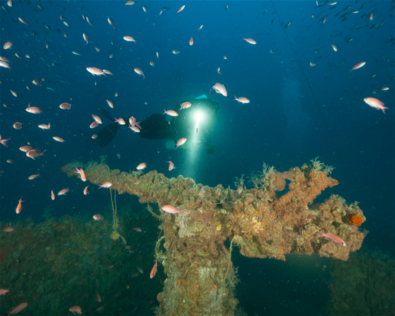 SS Aderno, wreck