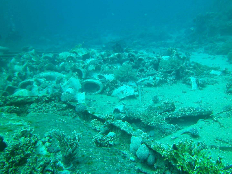 Shark & Yolanda Reef