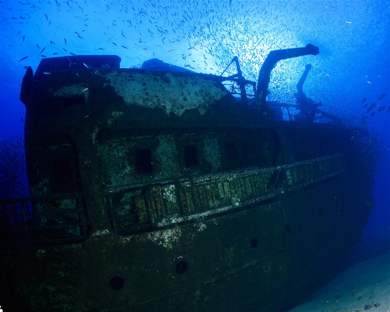 Madeirense (Wreck)