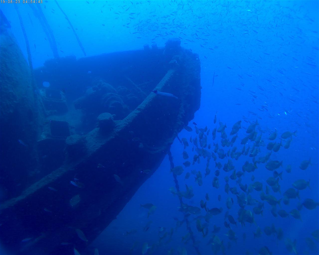 El Peñon (Wreck)
