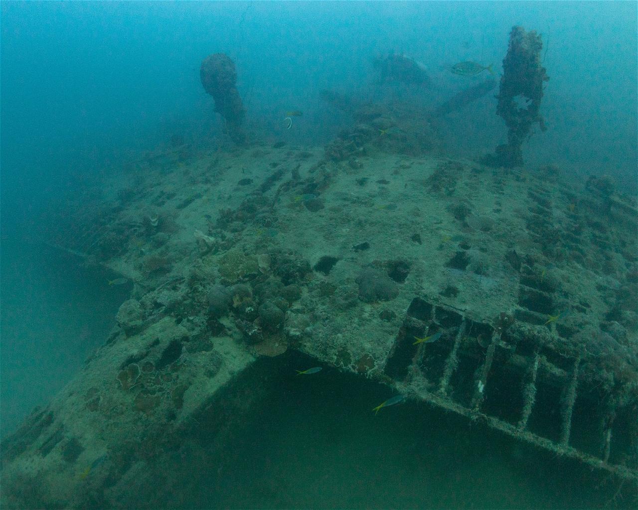 Aichi D3A 'Val' (Wreck)