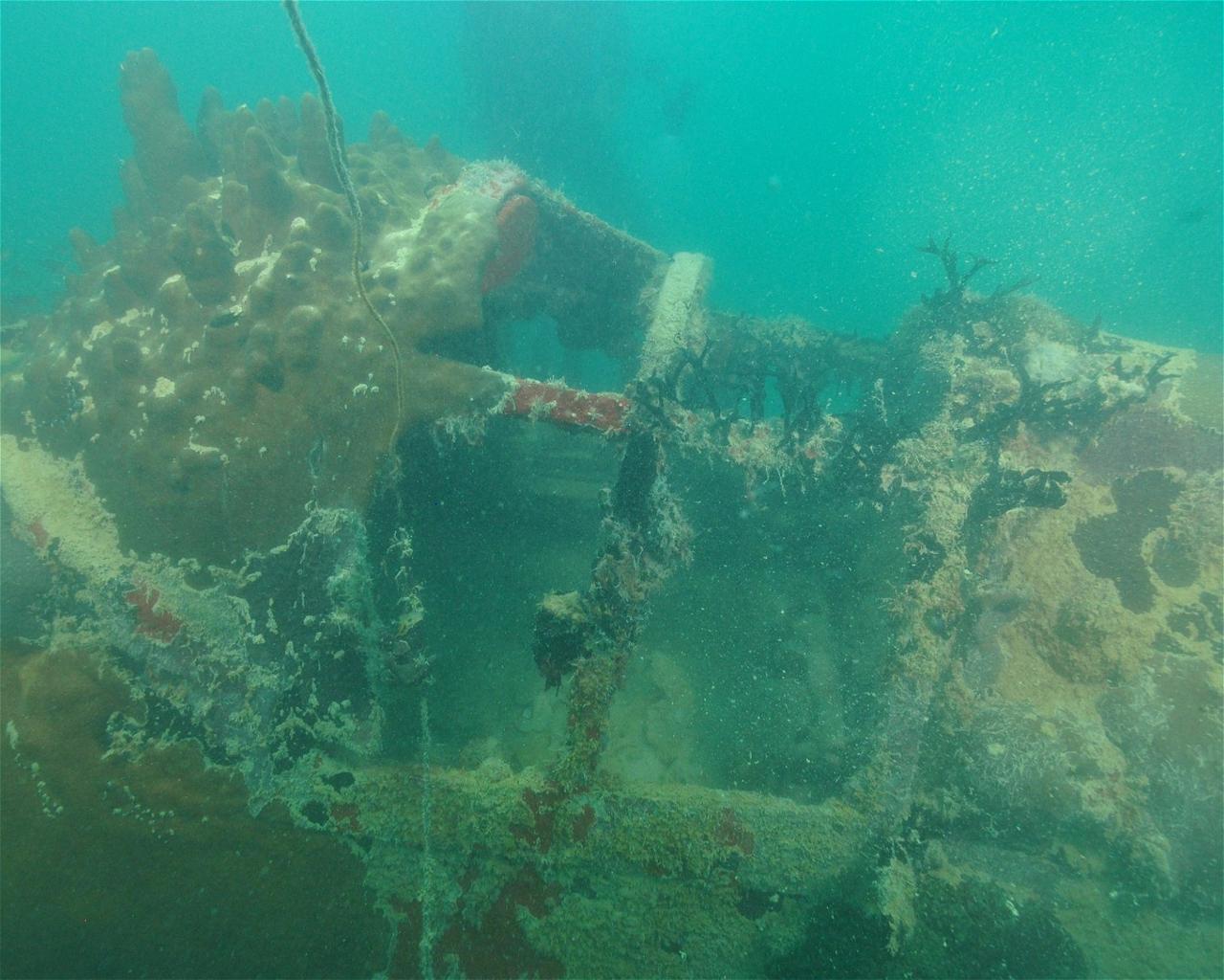 Vought F4U Corsair (Wreck)