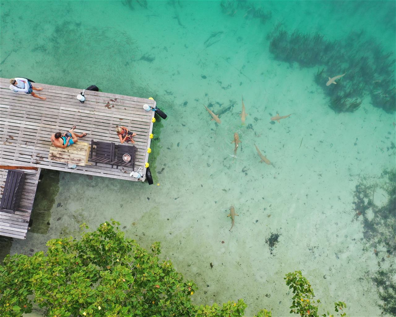 Lola Island