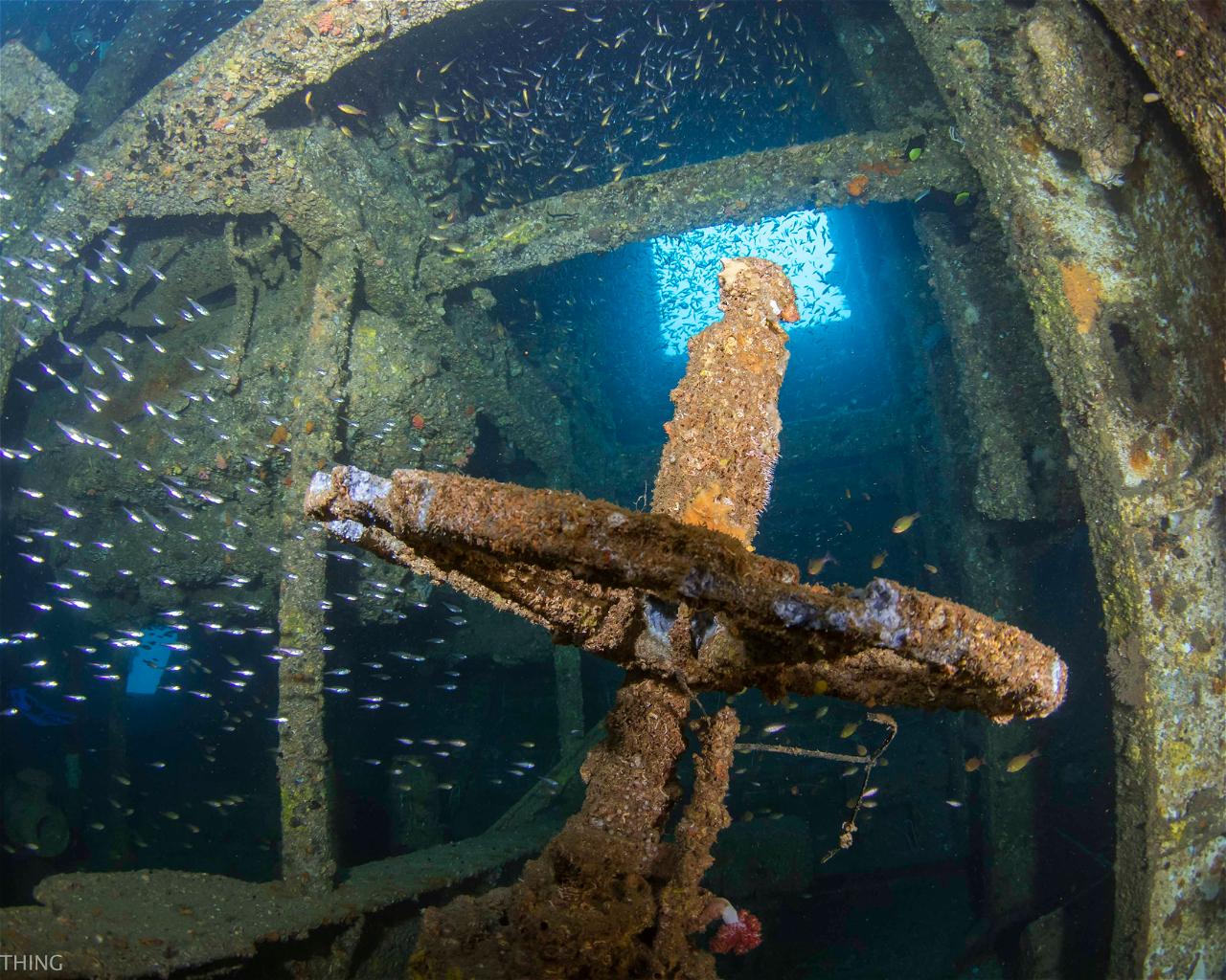 HMAS Brisbane (Wreck)